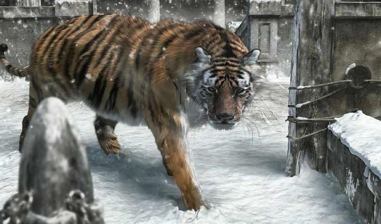 обои, тигр, msk, lion, аватар, аватары, tiger, ком