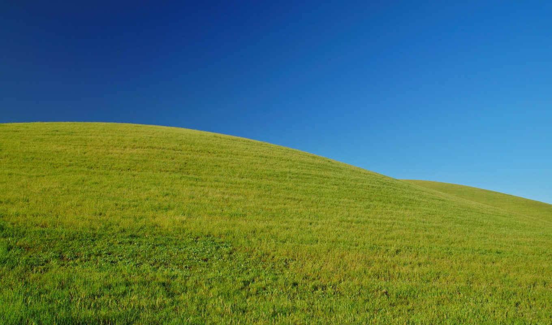 просмотров, каждый, категория, добавлено, трава, виджет, картинке, приз, our, fund, more,