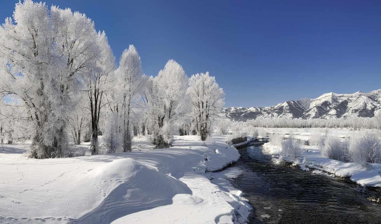 zima, priroda, снег, деревя, reka, иней,
