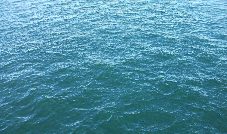 textura, calma, azul, del, onda, море, piscina, fundo, premium