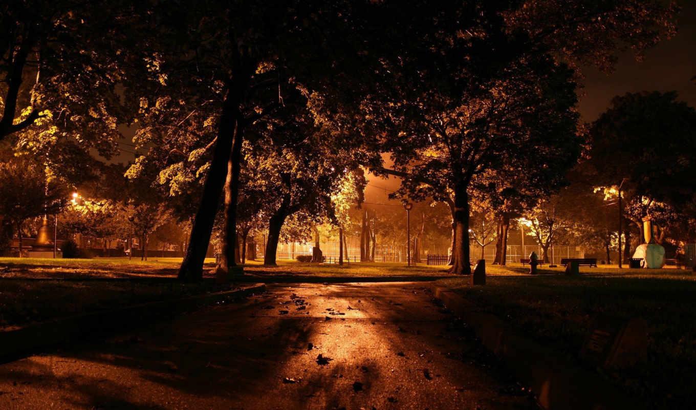 деревья, парк, ночь, фонари, дорожка, свет, город, вечер, скамейка, dark, разрешении, картинка,