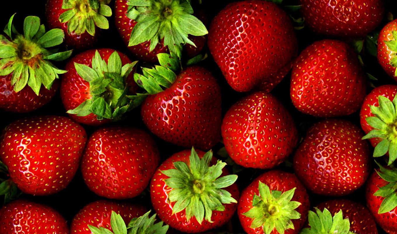 strawberries, bg, you, agricultura, ня, изображение, земляника, puzzle, google, fresh, food,