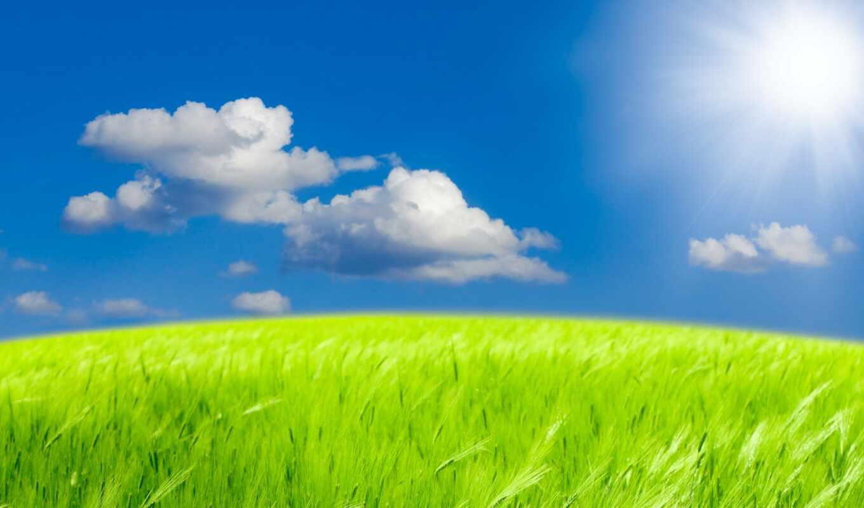 природа, небо, oblaka, пшеница, ukrainian, sun, поле, красиво, photoshop, summer, трава,