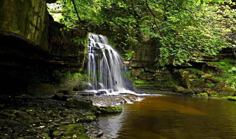 водопад, природа, река, лес,