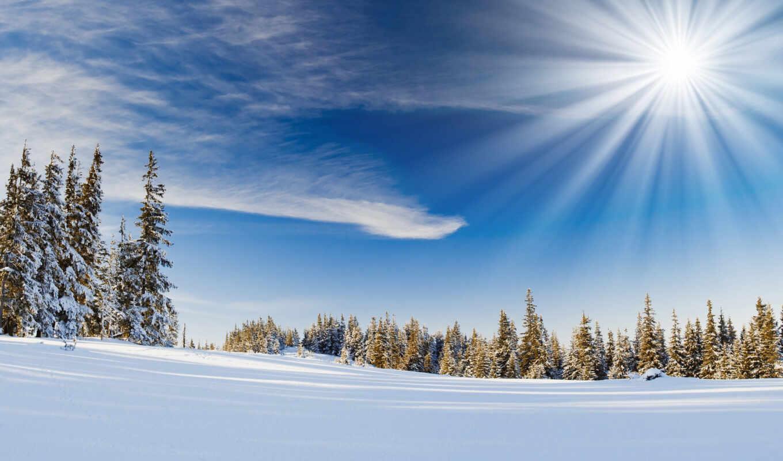 снег, winter, sun, природа, landscape, красивый, елка, небо, fir, компьютер