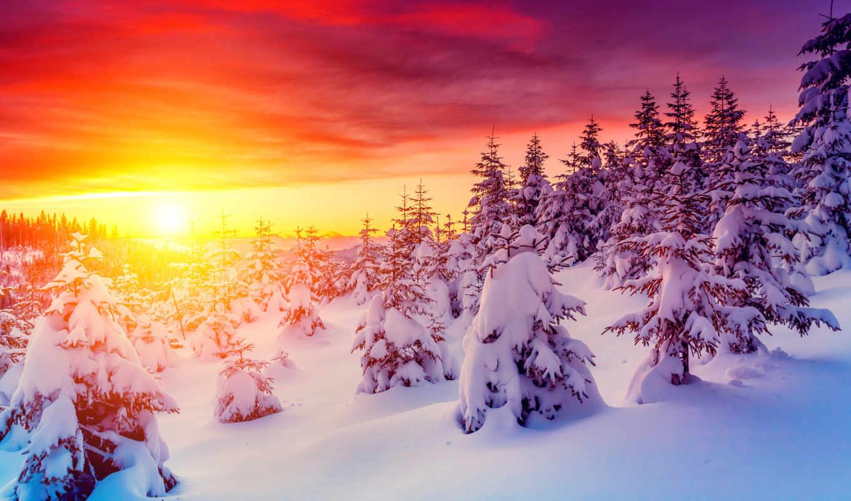 winter, коллекция,