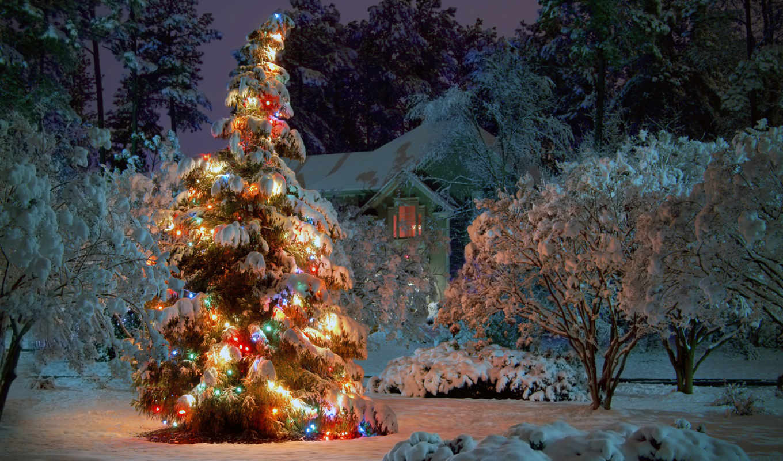 год, new, дерево, праздник, house, новогодняя, праздники,