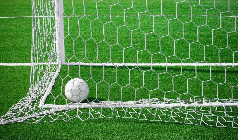 поле, футбольное, футбол, мяч, гол, зеленое, сетке,