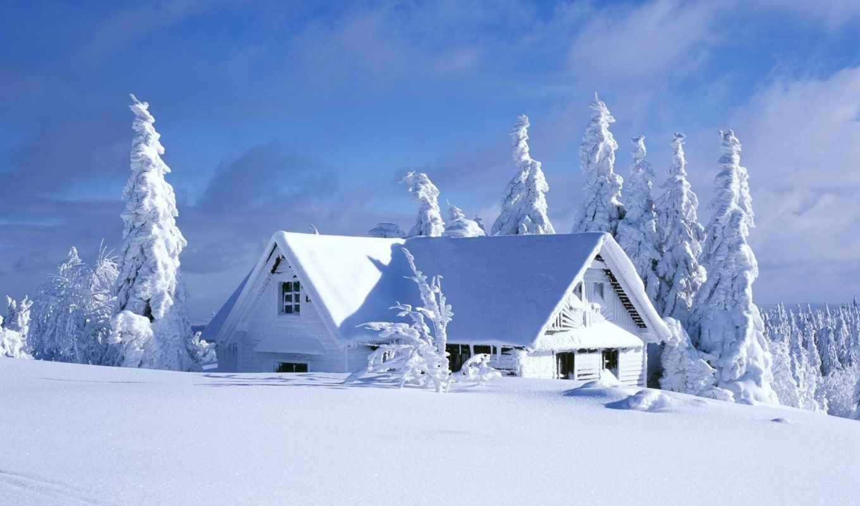 природа, онлайн, дневник, домик, собрать, часть, год, янв, красивые,