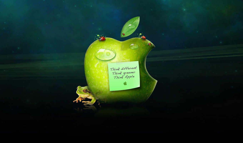 apple, зелёный, think, ecran, mac, зеленое, логотипом, fonds, ipad,