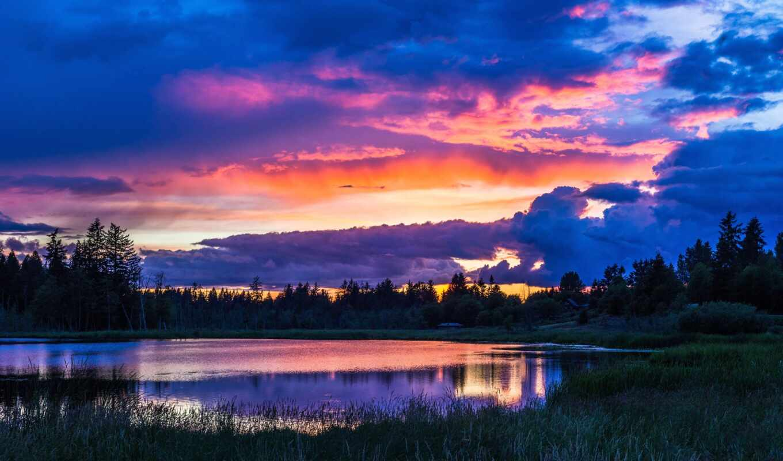 закат, озеро, дерево, природа, река, лес, небо, вечер, трава, красивый, побережье