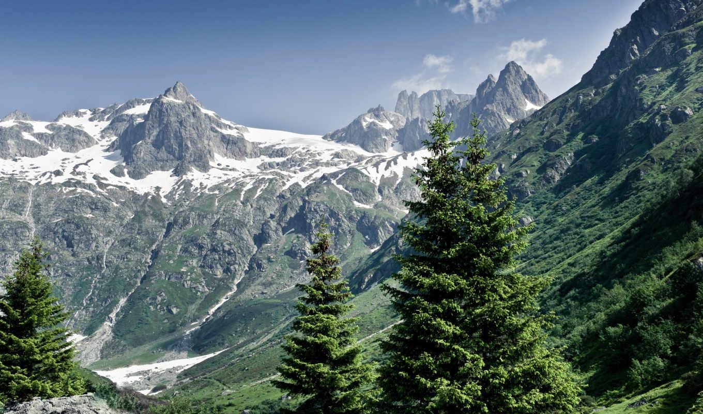 горы, альпы, природа, лес, лето, картинка, пейзаж, деревья, switzerland, priroda,