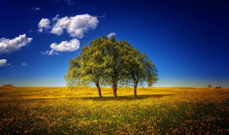 landscapes, красивые, пейзажи -, природа, количество,