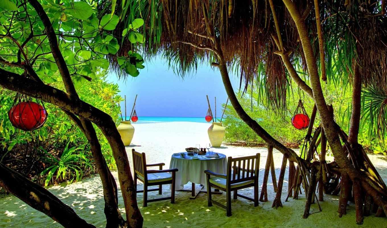 palm, hotel, resort, пляж, coco, остров, отеле, пальмы, maldives,