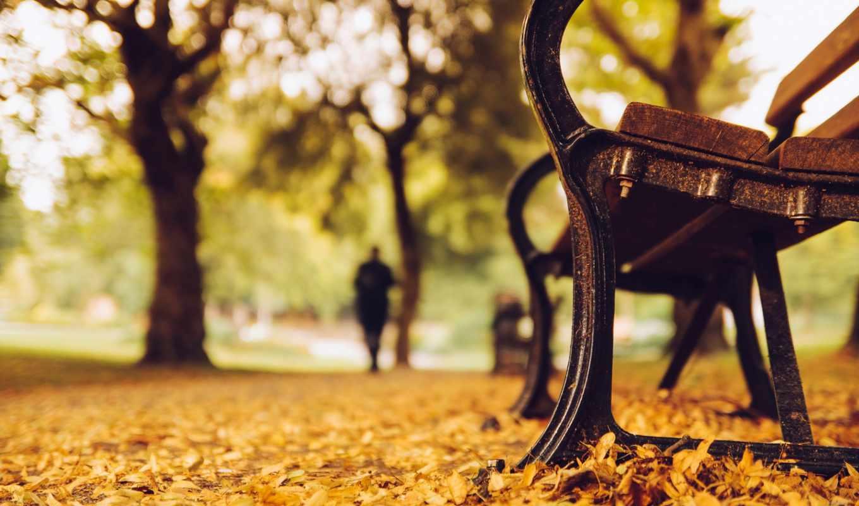 скамейка, park, парке, desktop, осень, photos, download, фотографии, природа, widescreen,