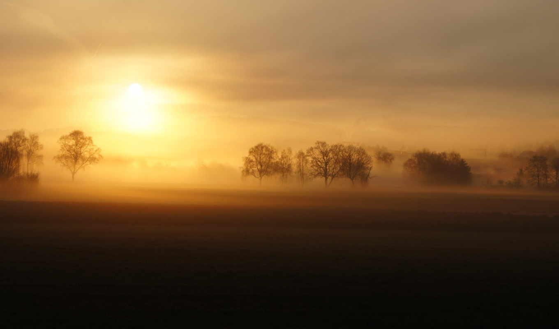 поле, туман, landscape, закат,