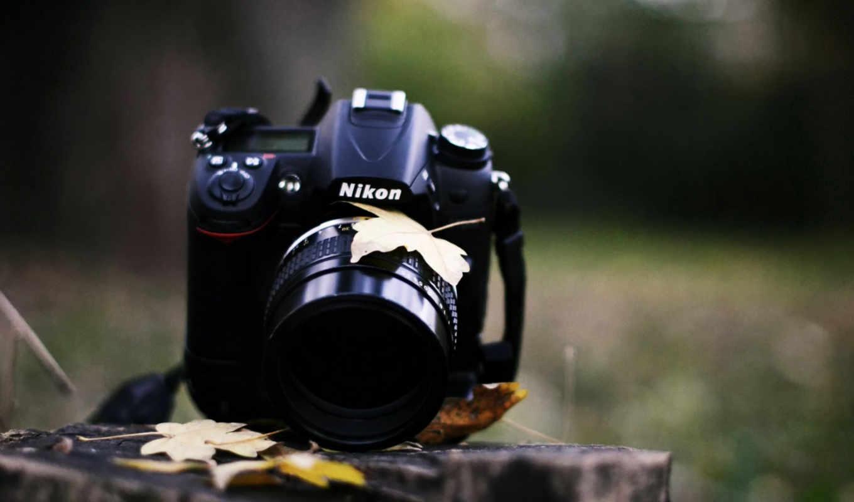 фотоаппарат, nikon, взгляд, листья, трава, осень,