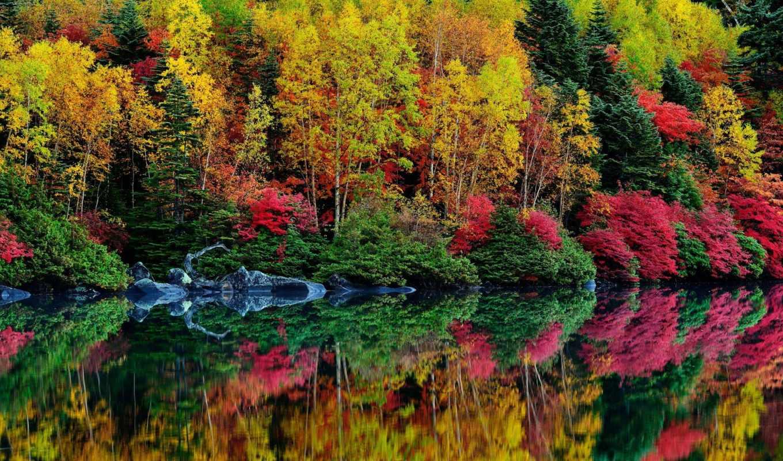 осень, water, природа, река, вышивки, лес, красиво, отражение, схемы, горы,