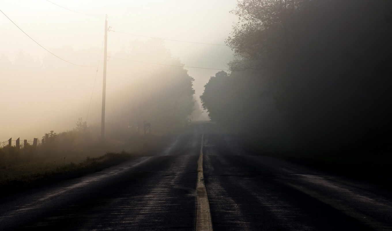 дорога, туман, пейзаж, утро, смотрите, похожие,