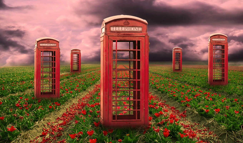 telephone, психоделика, flowers, телефонные, будки, поле, art, будка, this,