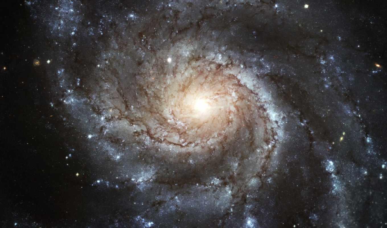 хаббл, телескопа, культурно, центр, просветительский, была, космос, ладоград, галактика, галактик, но, категория, festzabeg, подборка, дальний, просмотров, спиральных, название, добавил, image, февр,