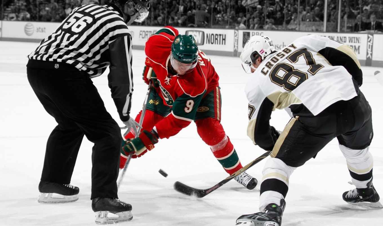 хоккей, шайба, льду, хоккеисты, арбитр, каток, разрешении, pack, картинку,