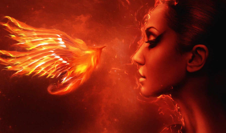 phoenix, день, лунно, птица, стрелок, единорог,