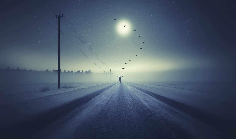 человек, птицы, вопрос, зима, дорога, снег, столбы, провода, лес, белый
