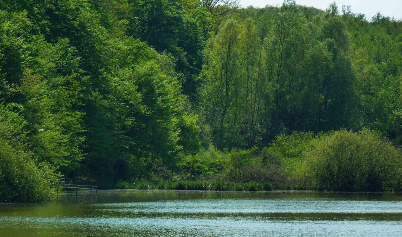 озеро, июл, random,