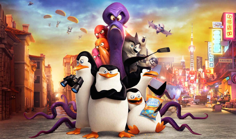 мадагаскар, penguins, пингвины, мадагаскара, картинка,