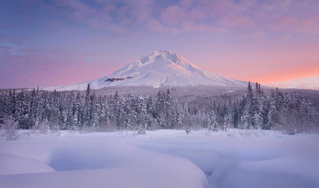 mount, hood, pictures, hier, windows,