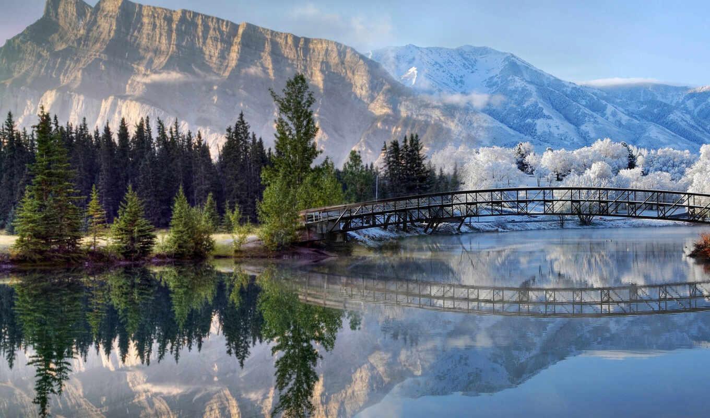 гора, landscape, природа, карпат, лист, national, альберта, снег, winter, креатив, дерево