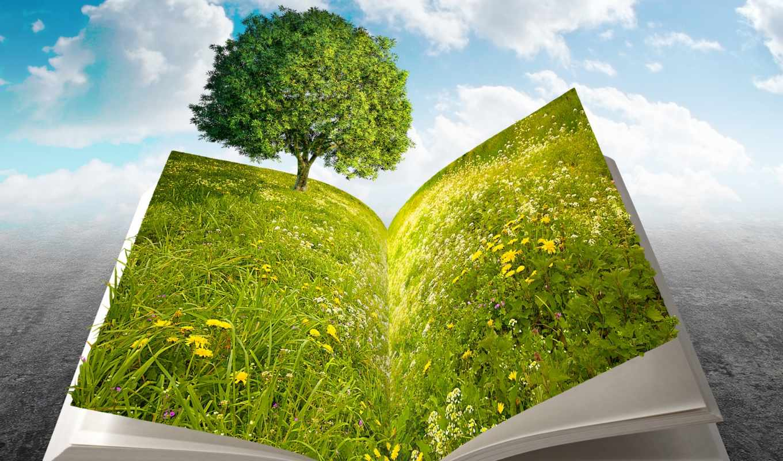 book, nature, aita, royalty, giordano, image, stock, free, jordygraph,