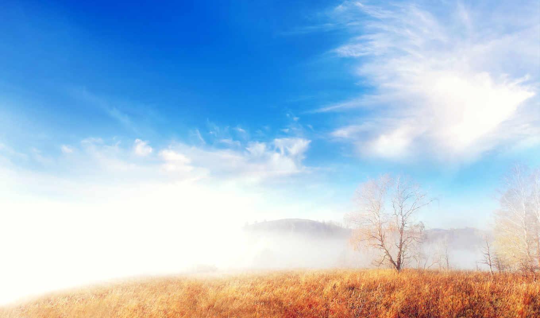 quotes, telugu, images, сердце, life, трогательный, хороший, best,