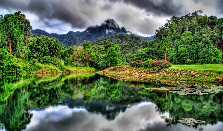 jungle, river, mountains, nature, hdr, forest, rừng, отражение, леса,