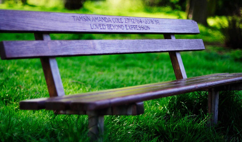 скамейка, лавочка, лавка, скамья, настроение, лавочки, трава, скамейки, зелень, лавки,