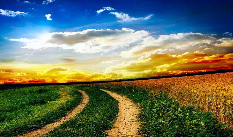 природа, небо, oblaka, поле, закат, трава, landscape, дороги,