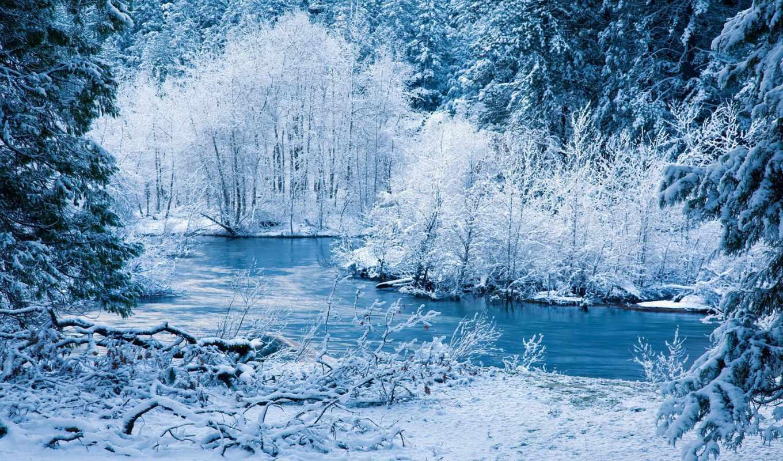 зимняя, сказ, лес, коллекция, часть, winter, природа, liveinternet, снег,