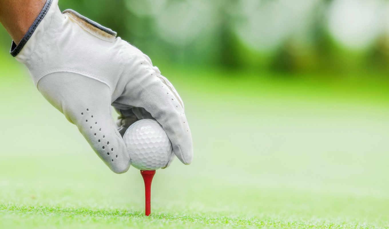 спорт, мяч, golf, перчатки, руки, категории, трава, газон,,