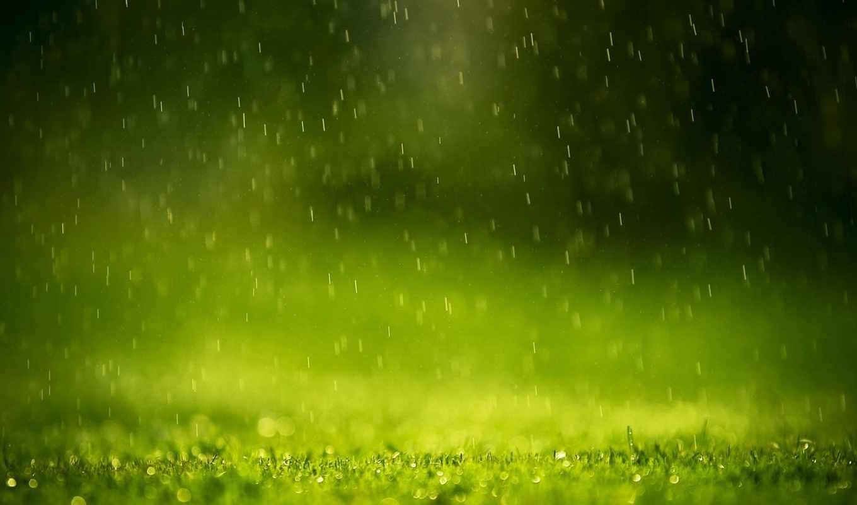 дождь, зелёный, природа, this, drops,