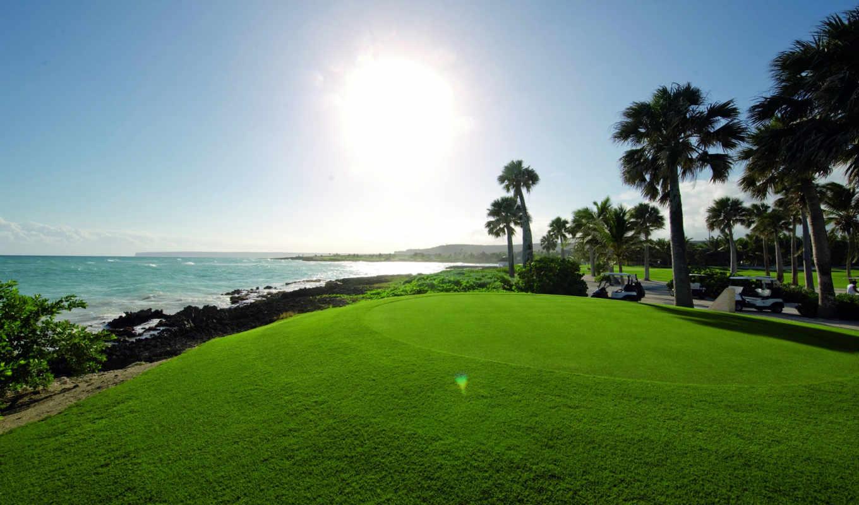 трава, море, солнце, net, прекрасных, turbobit, картинку, природа,