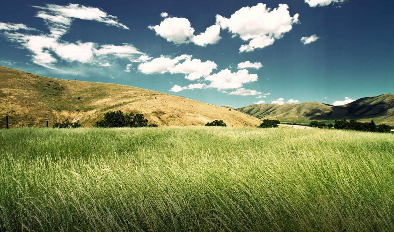 valley, green, resolution, холмы, природы, desktop, download, прекрасными, widescreen, hinh, уголками, background, трава,