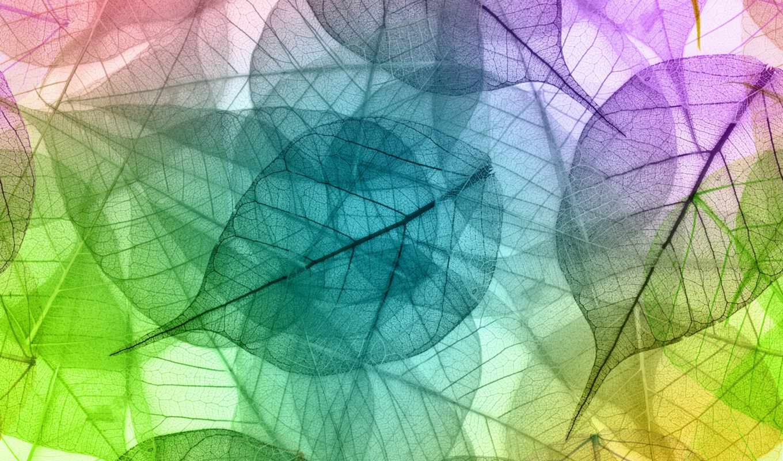 красивый, абстракция, категория, зелёный, арта, stroigrad, взгляд