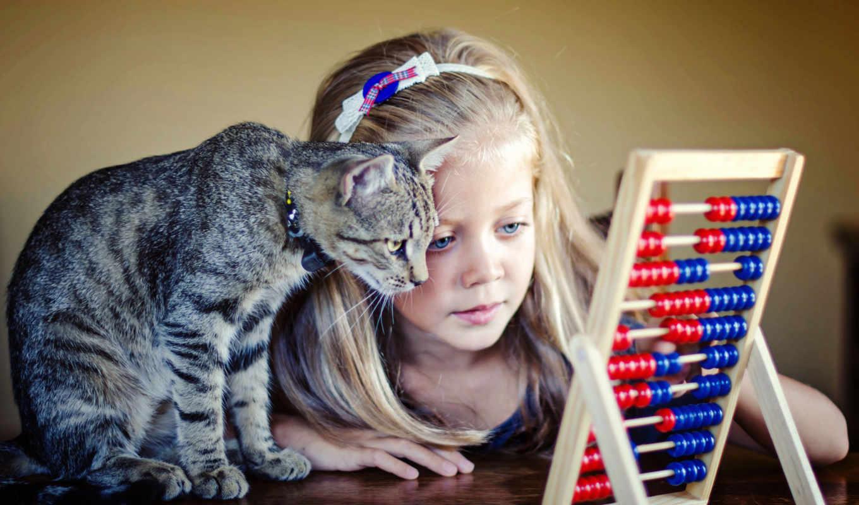 девочка, кот, счёты, стол, обруч, ошейник