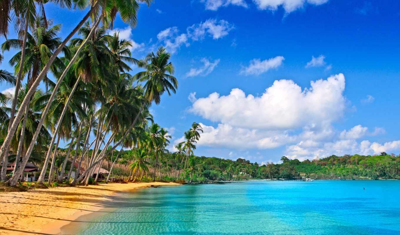 песок, море, пляж, дома, пальмы, облака, картинка,
