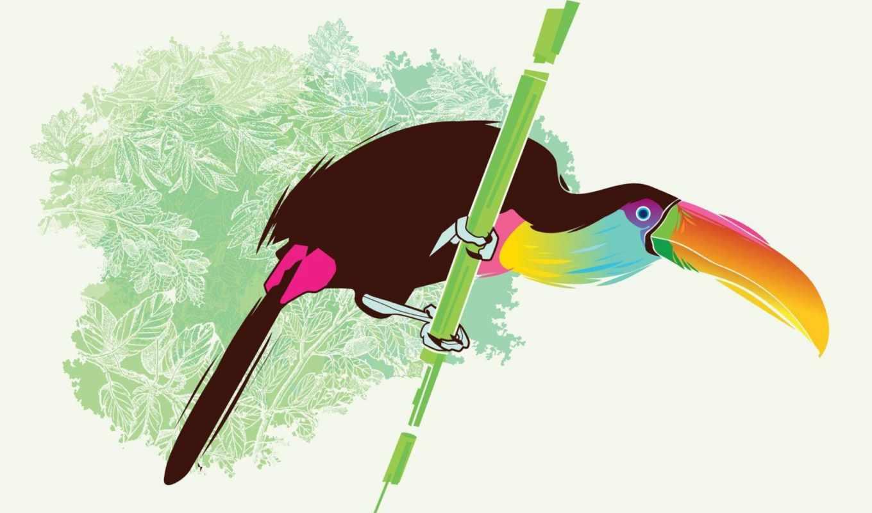 tucán, aves, аль, вектор, flores, pájaro, toucan, лео, lienzo,