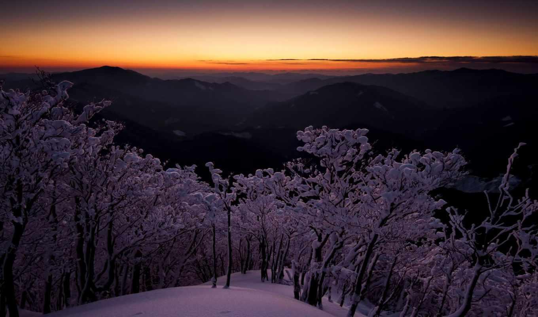 winter, снег, дождь, горы, сумерки, moonlight, небо, trees, glows, золотистый,