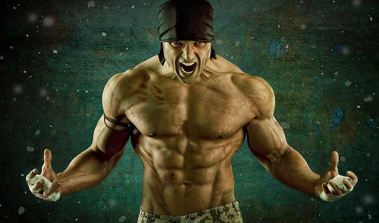 мускулы, мышцы,