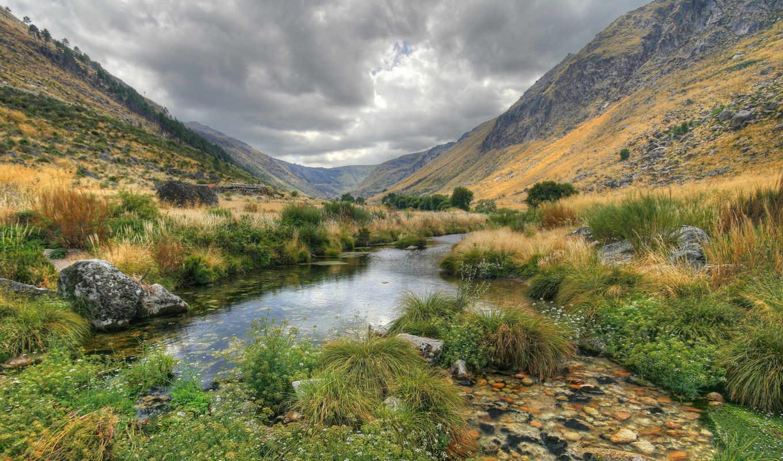 Новая Зеландия, трава, зелень, остров, горы, тучи ручей, горы, трава, камни