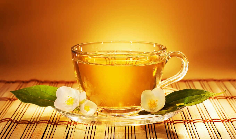 чай, tea, чашка, жасмин, цветок, блюдце, листья, жасмином, vel, jasmine, aliquam, wallpapers, cup, картинка,